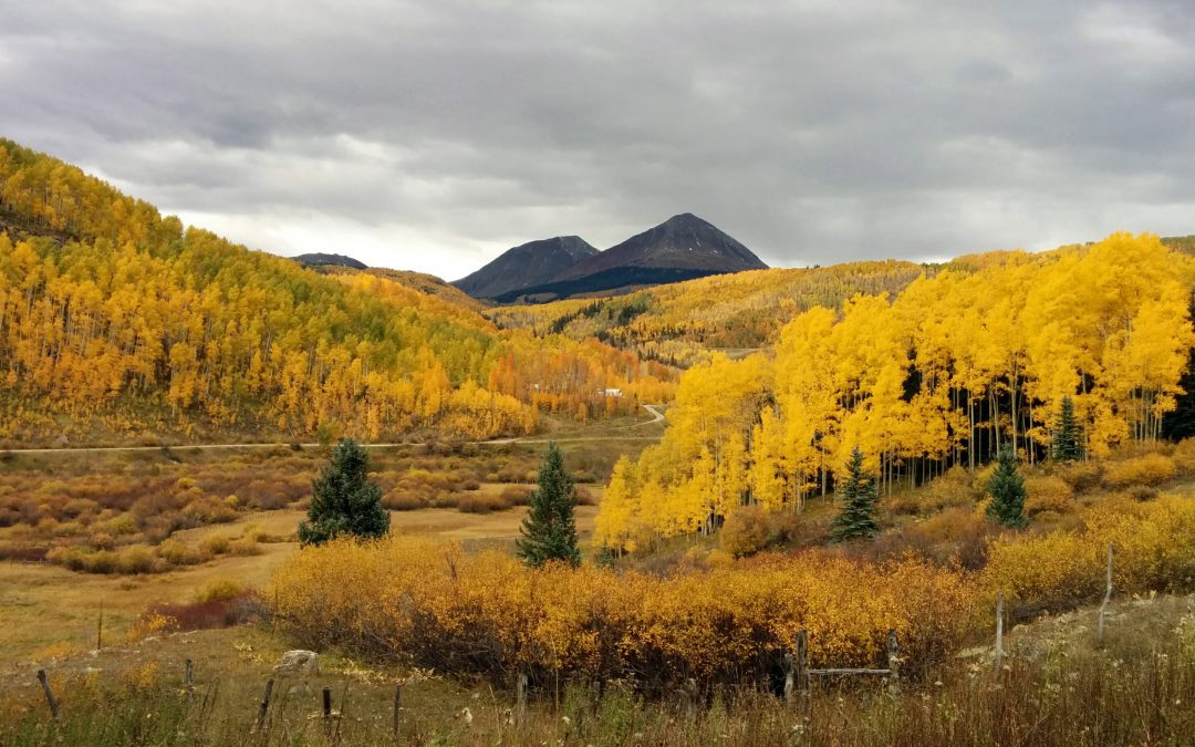 Tips For Getting The Most Out Of Fall Colors In Steamboat Springs