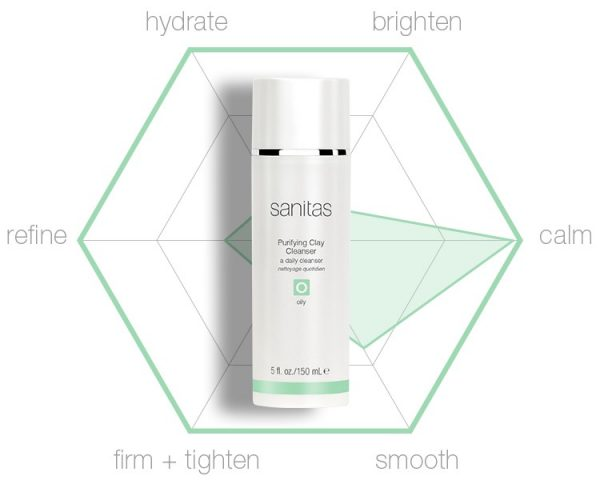 Purifying Clay Cleanser hexagraphic